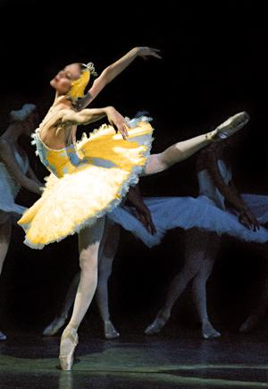 Image hotlink - 'http://dancenet.s3.amazonaws.com/images/i950/512742.861ballerina_orange_orig.jpg'